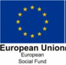 EU Social Fund logo 2016